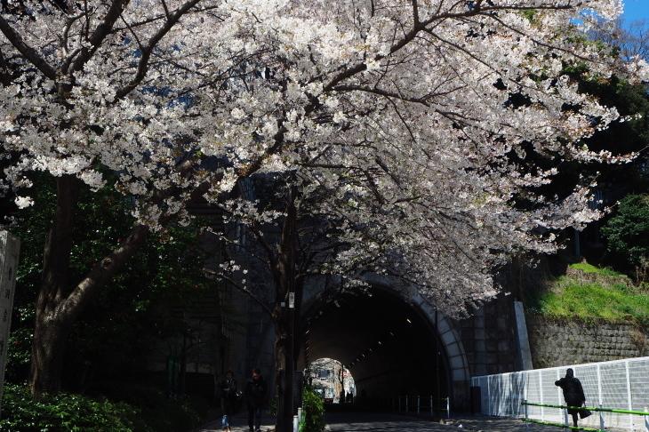 如何しても撮りたかったトンネル_e0305388_09434595.jpg