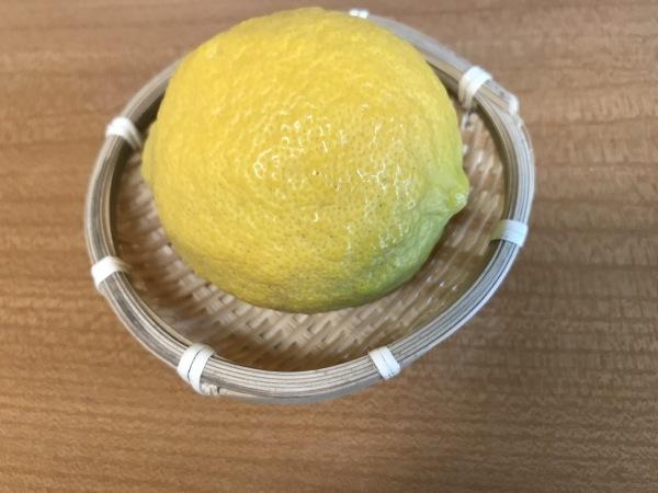 塩レモンを作ります、レモンの花が開きました。_e0397389_11055593.jpeg