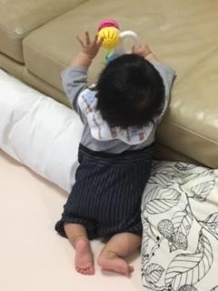 Babyの成長♪_f0243509_11205851.jpg