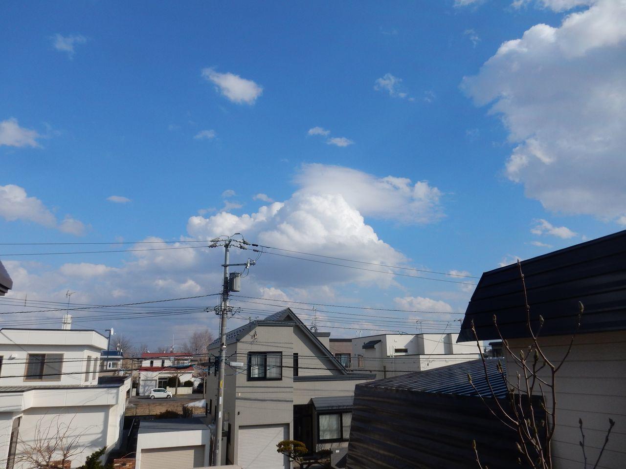札幌の春_c0025115_22303426.jpg