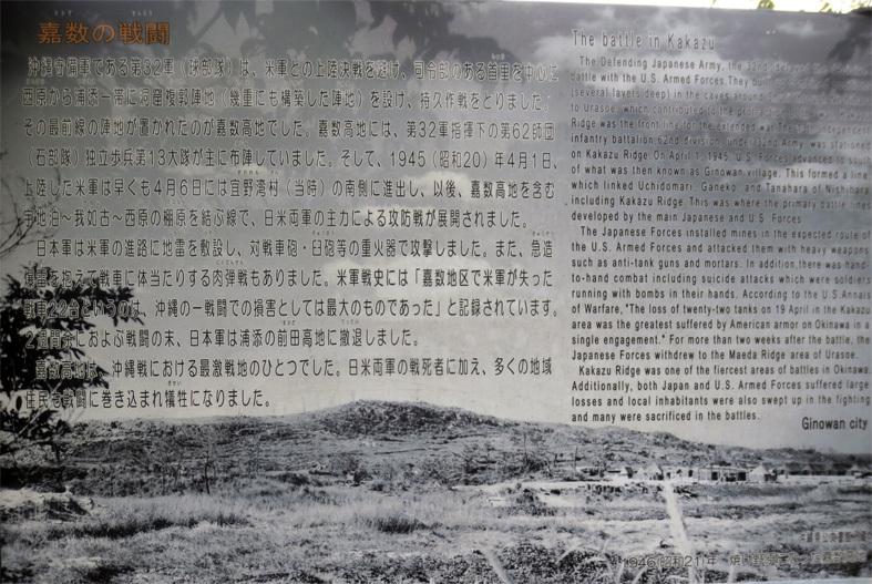 ■辺野古海岸で宝貝を探す――沖縄米軍基地ツアー_d0190217_15000956.jpg
