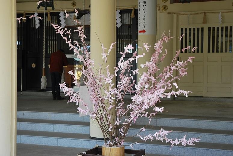 境内の桜_f0067122_10071085.jpg