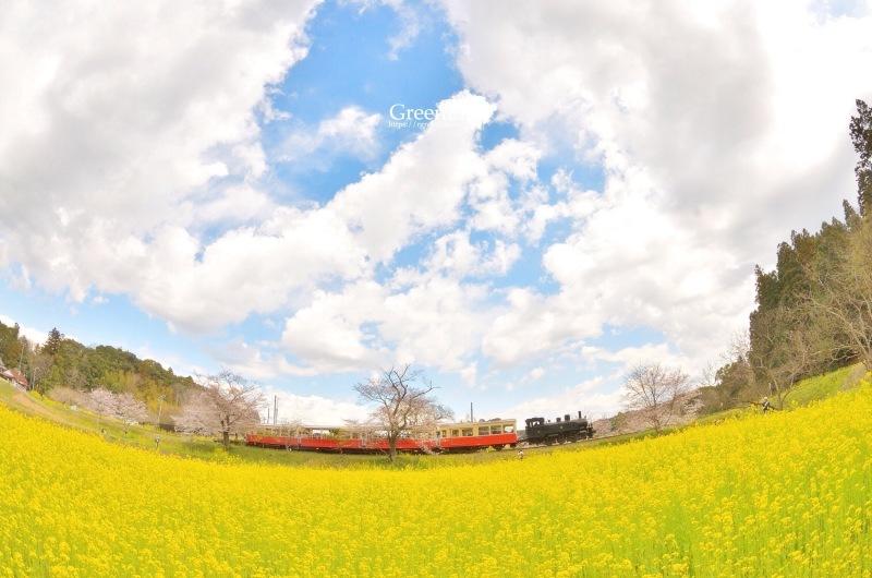 春の里山をゆく〜_f0321522_12324980.jpg