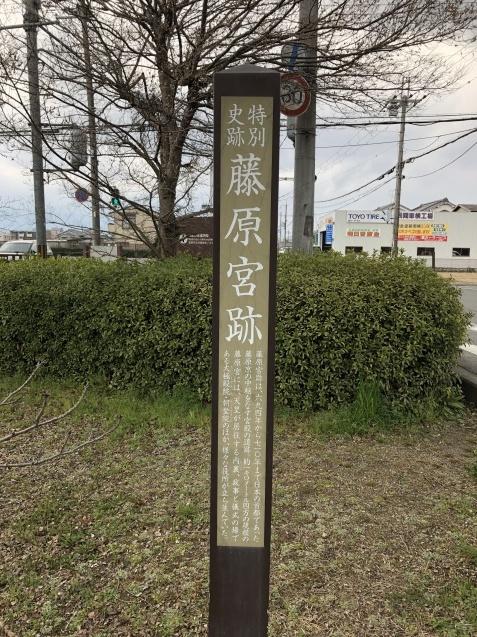 天皇と藤原氏のお家騒動_b0409627_00451784.jpg