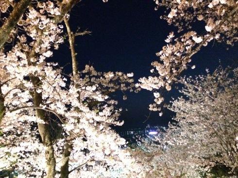 4月ー桜の季節ー_f0206741_21273628.jpeg