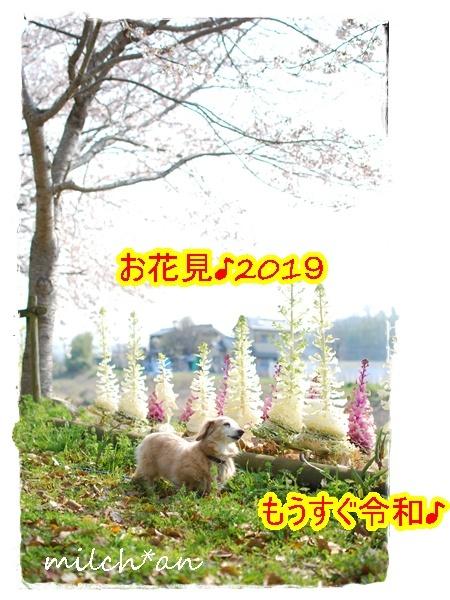 b0115642_22121121.jpg