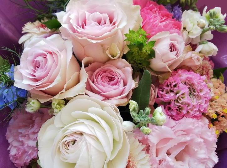 33年目の素敵な春を迎えました!_c0054646_12540871.jpg