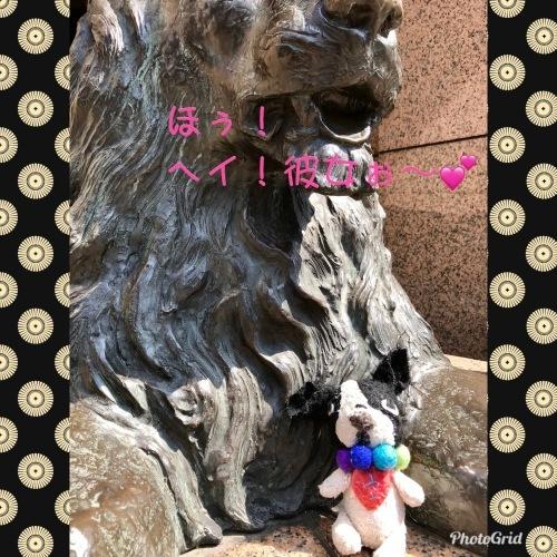 前川幸市さんのフレブルや猿にすっかり魅せられた・・・(温かいんだもん♪)_b0307951_23123334.jpg