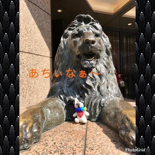 前川幸市さんのフレブルや猿にすっかり魅せられた・・・(温かいんだもん♪)_b0307951_23163577.jpg