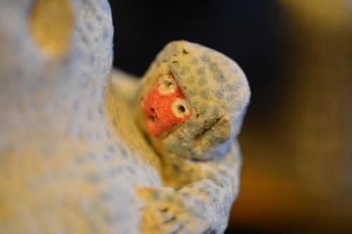 前川幸市さんのフレブルや猿にすっかり魅せられた・・・(温かいんだもん♪)_b0307951_23521999.jpg