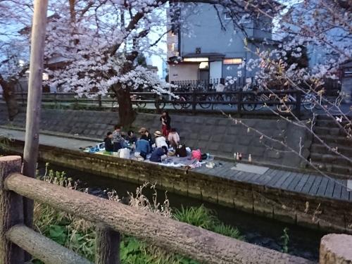 ニケ領用水に桜を見に行ってきた!_c0100865_11352542.jpg
