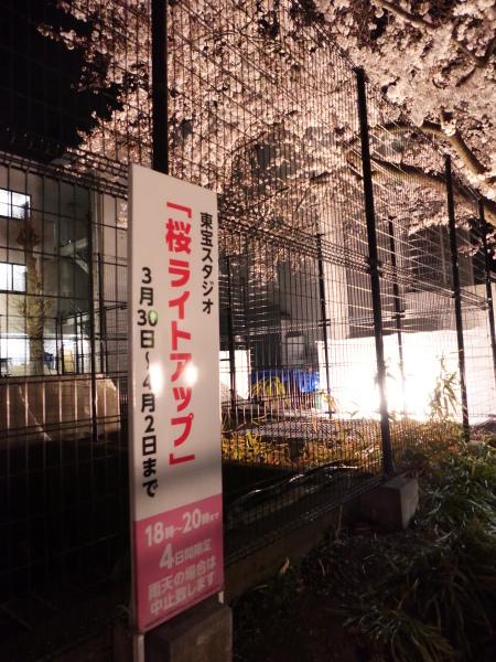 仙川 夜桜_a0351368_21232193.jpg