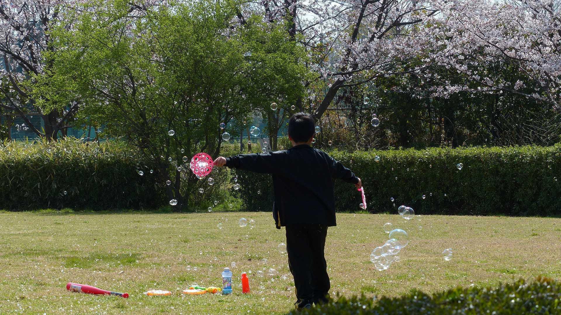 今年の桜はどこか変? 【 2019 4/6(土) 】_a0185081_15253192.jpg