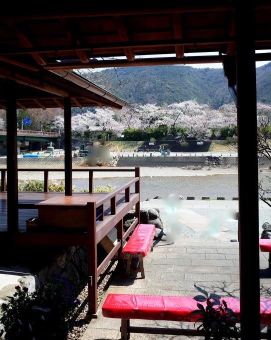 桜咲く伊勢から鳥羽へ~_c0188784_18424627.jpg
