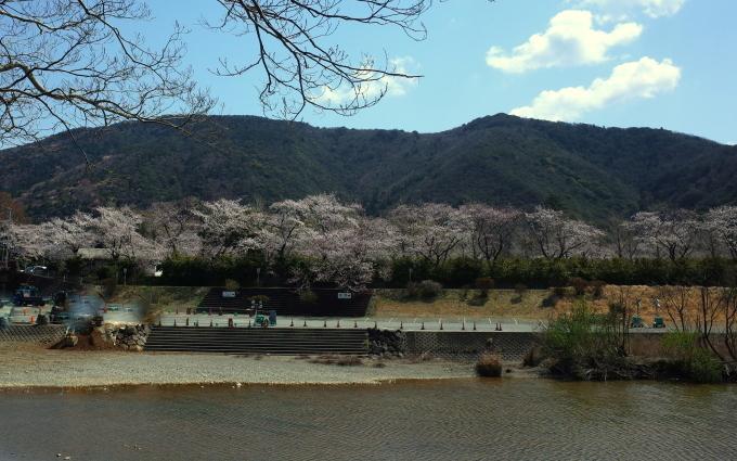 桜咲く伊勢から鳥羽へ~_c0188784_18452924.jpg