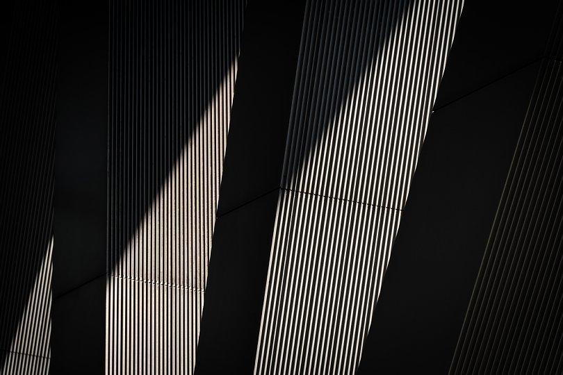 光蜥蜴が戯れる卯月のオフィスビル_d0353489_20333798.jpg