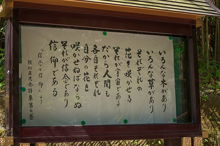 北鎌倉 円覚寺の桜_b0145398_23363146.jpg