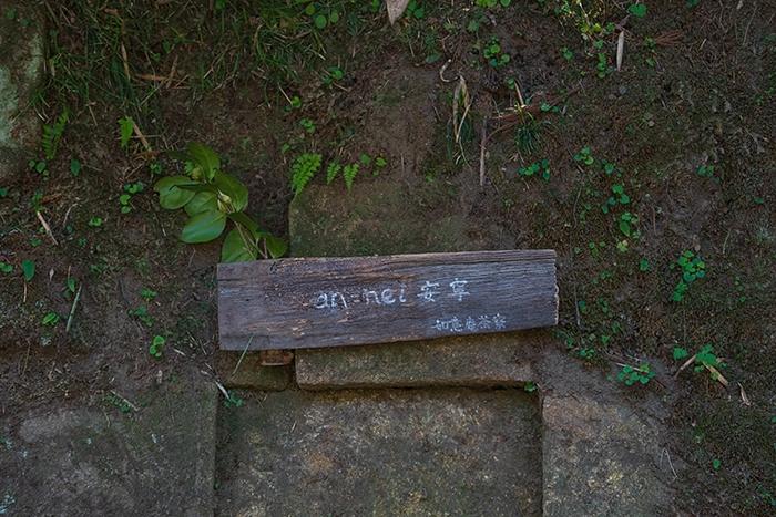 北鎌倉 円覚寺の桜_b0145398_23400218.jpg