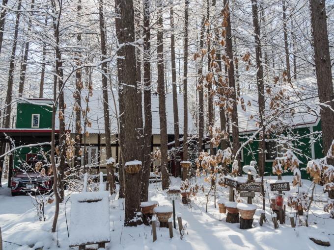 """4月ですが・・カラマツ林が雪化粧""""スノードロップ""""は開花。_f0276498_23093226.jpg"""