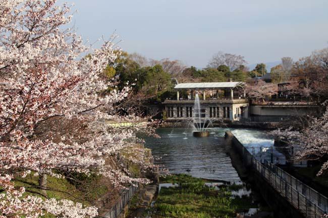 平安神宮大鳥居と疎水・インクラインあたり_e0048413_21353092.jpg