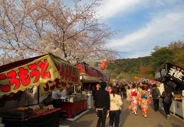 夜桜満喫 円山公園_e0048413_22375951.jpg