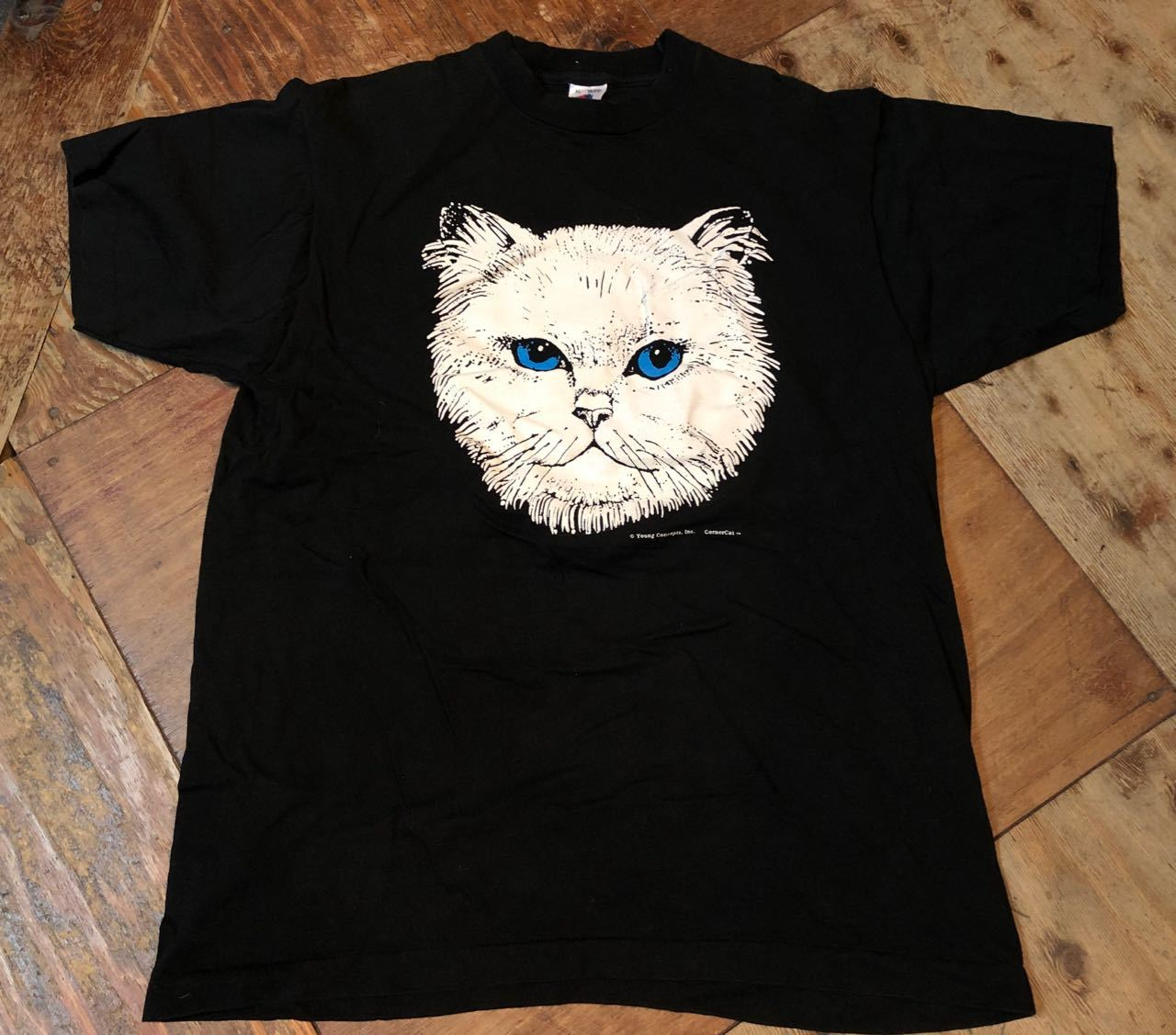 4月7日(日)入荷!90s MADE IN U.S.A  CAT PRINT FURUIT OF THE LOON Tシャツ! _c0144020_13120525.jpg