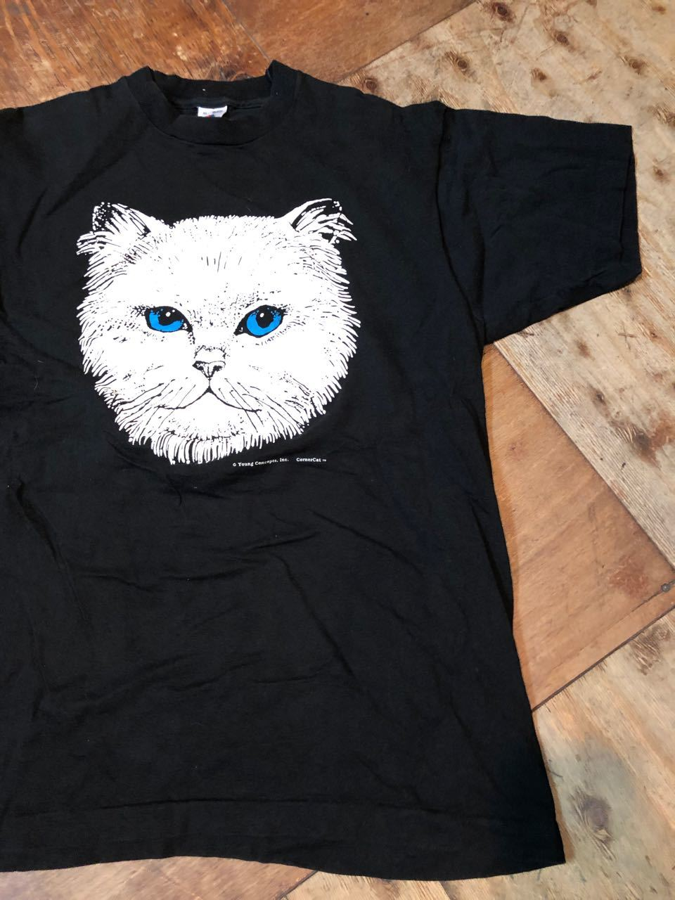 4月7日(日)入荷!90s MADE IN U.S.A  CAT PRINT FURUIT OF THE LOON Tシャツ! _c0144020_13121637.jpg