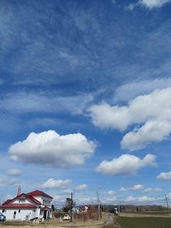 天気のよい一日_b0405523_10200807.jpg