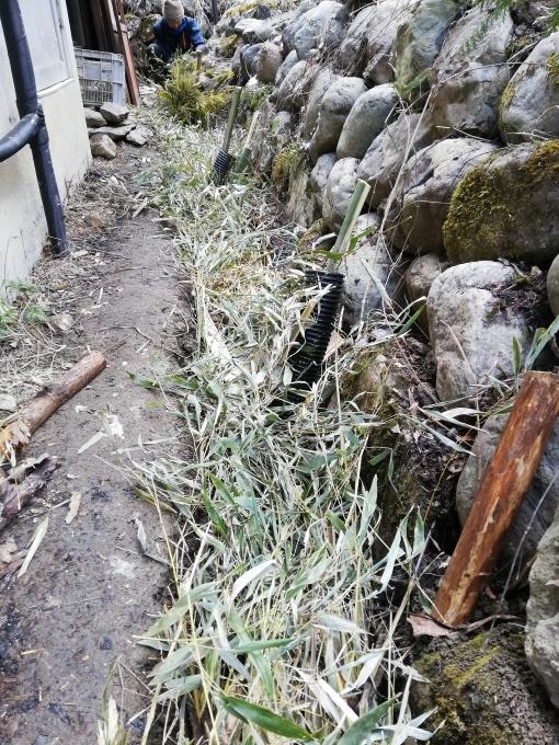 大地の再生の続き_e0015223_20035147.jpg