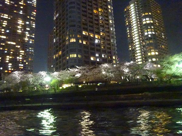 屋形船に乗って、夜桜隅田川クルーズ(前編)_f0097523_21542555.jpg