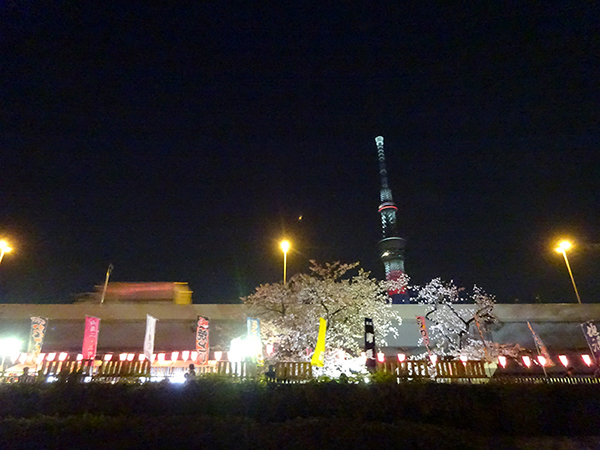 屋形船に乗って、夜桜隅田川クルーズ(前編)_f0097523_21545869.jpg