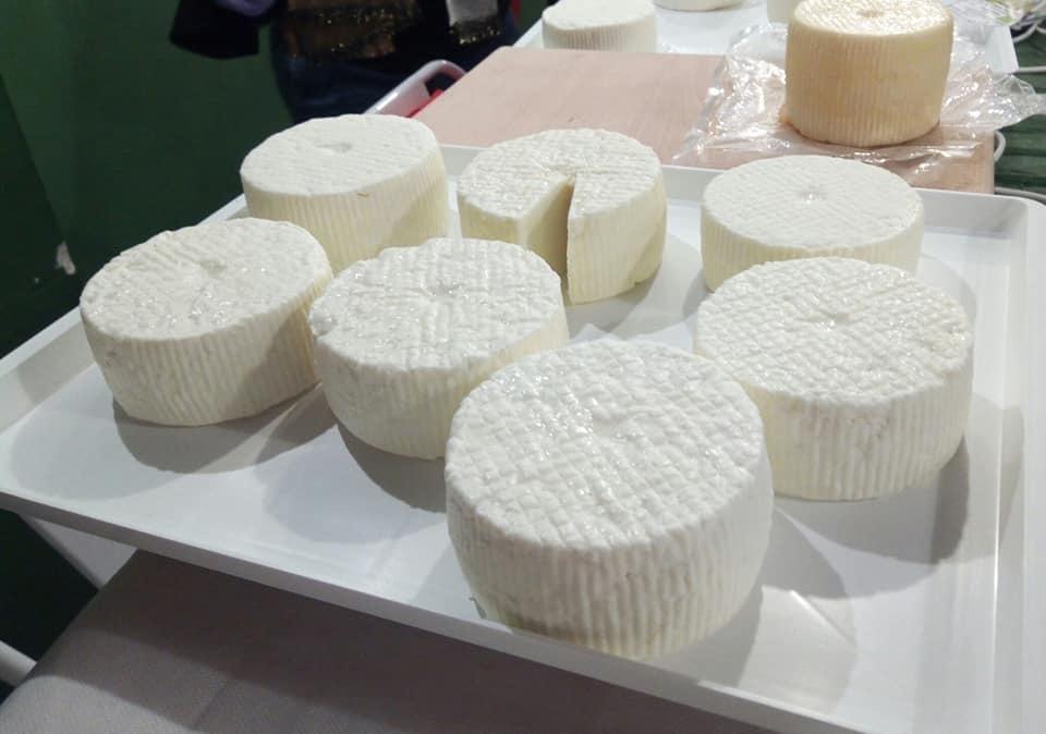 ONAFチーズ勉強会に今月も行きました!_b0305039_21334999.jpg