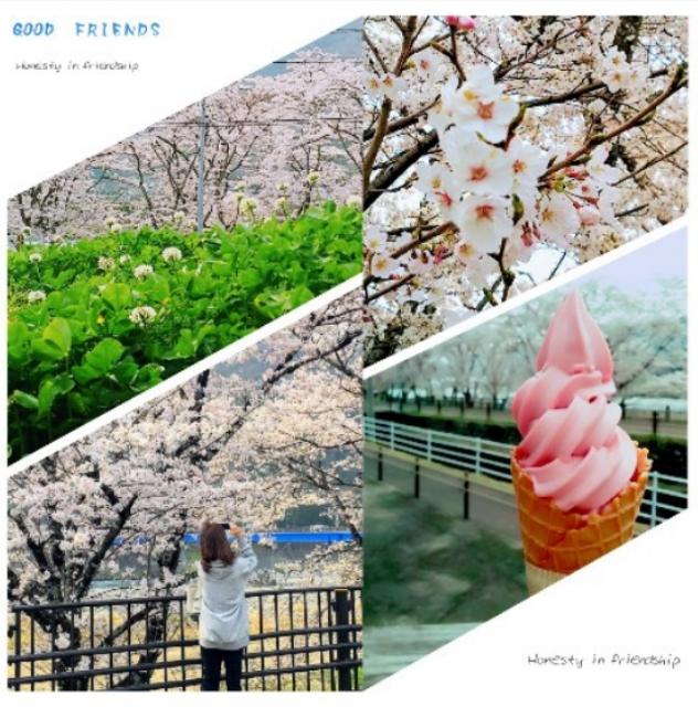 4/7(日) お花見_a0272042_19263150.jpg