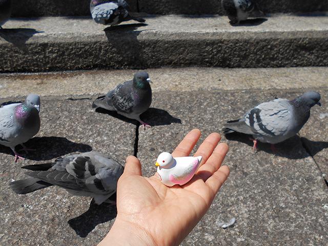 京都・桜めぐり1(4月4日 木 2019年)_a0099744_15082012.jpg
