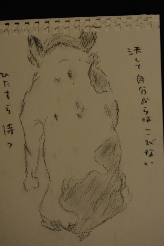 前川幸市さんのフレブルや猿にすっかり魅せられた・・・(温かいんだもん♪)_b0307951_00051150.jpg