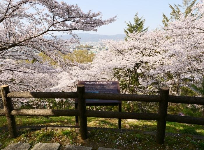春爛漫の紀伊風土記の丘 2  2019-04-10 00:00   _b0093754_21583050.jpg