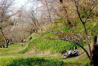 吉野山の桜開花情報♪_b0194861_12051009.jpg