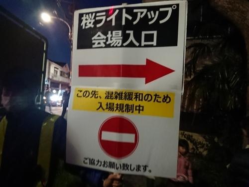 野川に桜のライトアップを見に行ってきた!_c0100865_11042344.jpg
