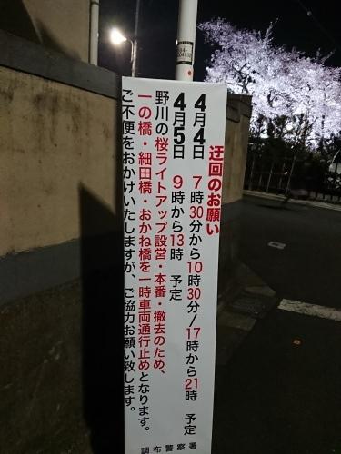 野川に桜のライトアップを見に行ってきた!_c0100865_11234167.jpg