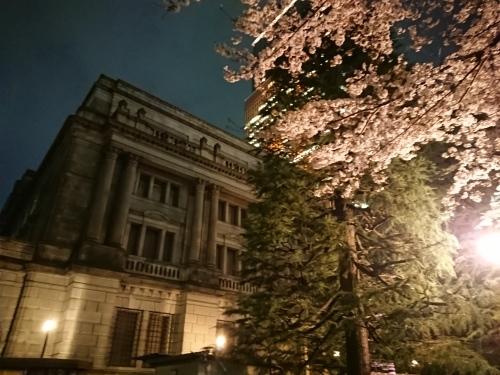 日本橋でピンクの桜のライトアップ♪_c0100865_11475895.jpg