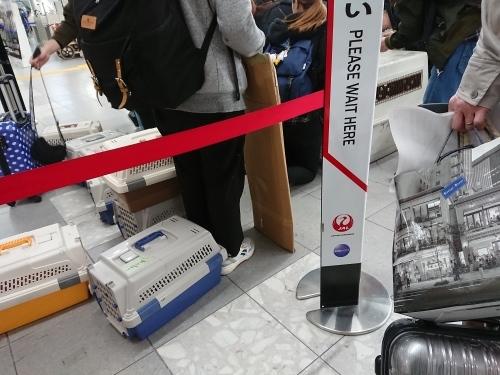 福岡一人旅で、すっかりリフレッシュ!_c0100865_14365753.jpg