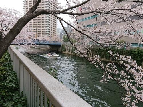 福岡一人旅で、すっかりリフレッシュ!_c0100865_14485248.jpg