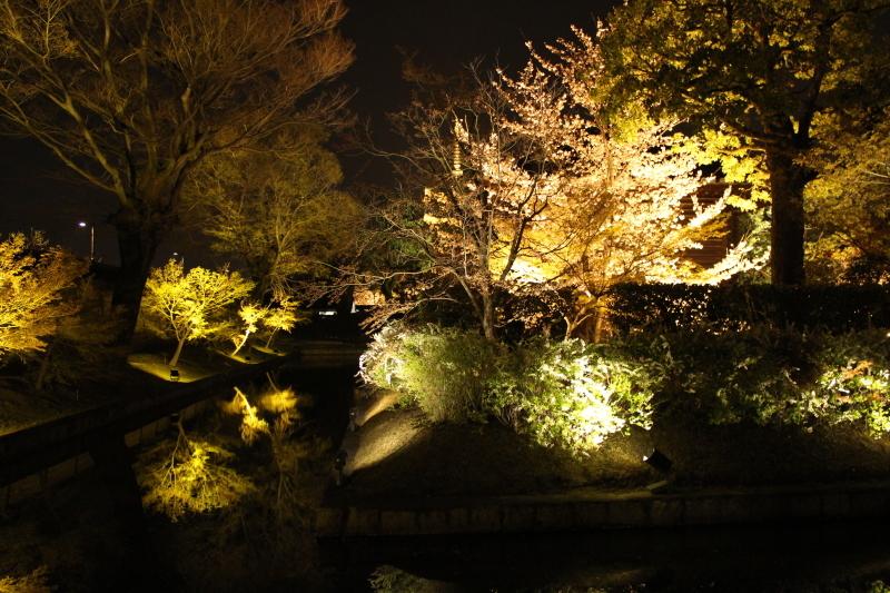 4月6日 東寺の桜は見頃です_a0023466_09014912.jpg