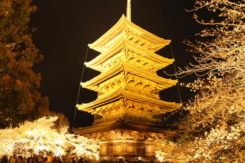 4月6日 東寺の桜は見頃です_a0023466_09030970.jpg