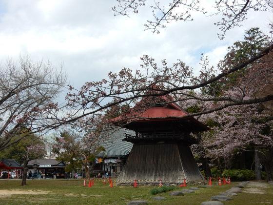 勝手に桜ツアー ご近所編_e0355177_13450014.jpg