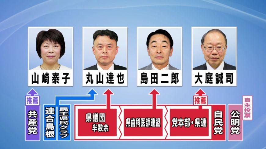 知事選挙の構図_e0128391_19361921.jpg