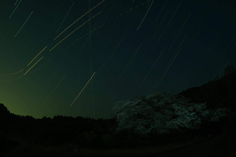 一本桜と星_e0362696_06480099.jpg