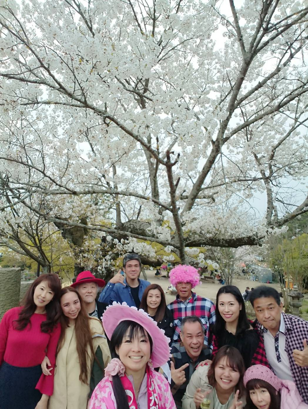 サクラ桜SAKURA。_a0050302_23131514.jpg