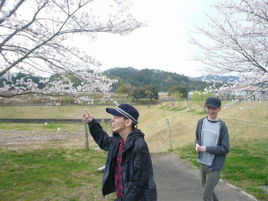 4/6 天啓公園_a0154110_12571610.jpg
