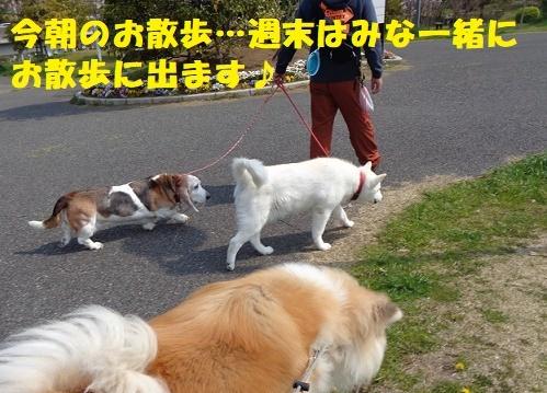 f0121712_00232252.jpg
